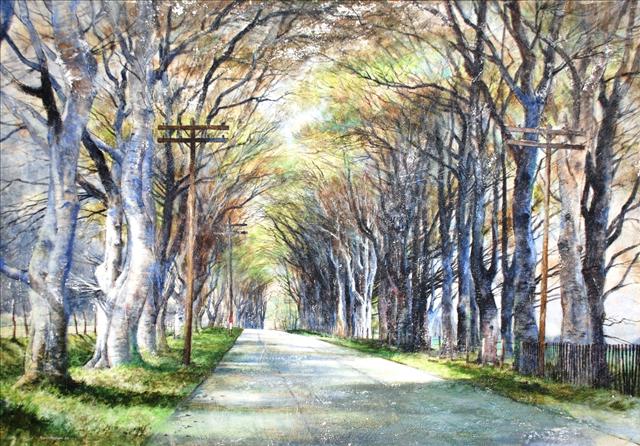 Beech Trees Along an English Road