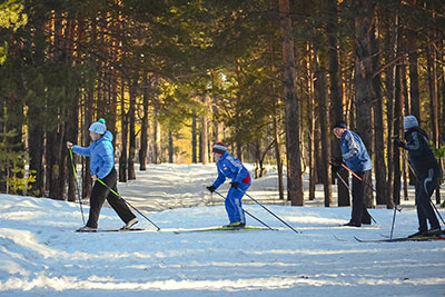 People cross-country skiing in the woods